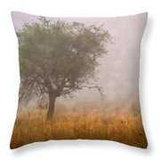 Tree In Fog Throw Pillow by Debra and Dave Vanderlaan