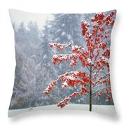 Tree In The Winter Throw Pillow by Natural Selection Craig Tuttle