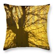 Tree Shadow Throw Pillow by Bernard Jaubert