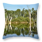Tree Stumps In The River Throw Pillow by Kaye Menner