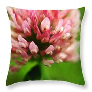 Trefle En Solo S05b-t02 Throw Pillow by Variance Collections