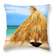 Tropical Beach Throw Pillow by Elena Elisseeva