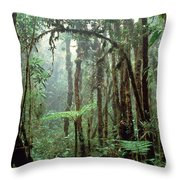 Tropical Cloud Forest Throw Pillow by Gregory G. Dimijian