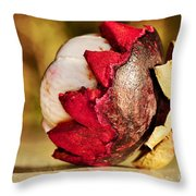 Tropical Mangosteen - Ready To Eat Throw Pillow by Kaye Menner