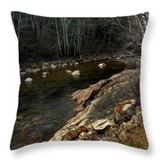 Trout Fishery Throw Pillow by Skip Willits