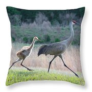 Trying To Keep Up Throw Pillow by Carol Groenen