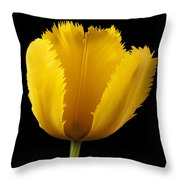 Tulipa Jaune Throw Pillow by Martin Williams
