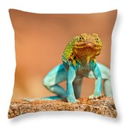 Turquoise Brilliance Throw Pillow by Elizabeth Hart