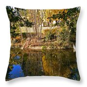 Twiggy Reflections Throw Pillow by Pamela Patch