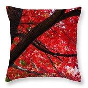 Under The Reds Throw Pillow by Rachel Cohen