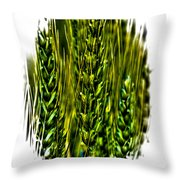 Unripened Wheat II Throw Pillow by David Patterson