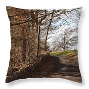 Up Over The Hill Throw Pillow by Robert Margetts