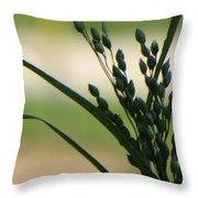 Verdant Grain Throw Pillow by Sonali Gangane