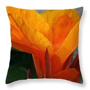 Vibrant Canna Throw Pillow by Susan Herber