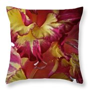 Vibrant Gladiolus Throw Pillow by Susan Herber