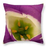 Vibrant Throw Pillow by Lainie Wrightson
