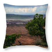 View Of Canyonland Throw Pillow by Robert Bales