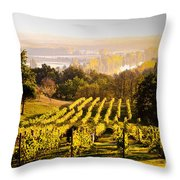 Vineyard Throw Pillow by Voisin and Phanie and Photo Researchers