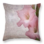 Vintage Gladioli Throw Pillow by Jane Rix