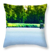 Virginia Tides Throw Pillow by Bill Cannon