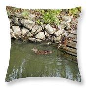 Wait For Me Throw Pillow by Corinne Elizabeth Cowherd