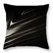 Wall To Wall Throw Pillow by Rebecca Sherman