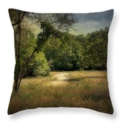Wandering Path I Throw Pillow by Tamyra Ayles