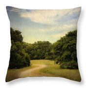 Wandering Path II Throw Pillow by Tamyra Ayles