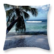 Warm Water Shade Throw Pillow by Skip Willits