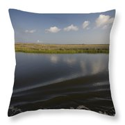 Water And Marsh In Plaquemines Parish Throw Pillow by Tyrone Turner