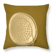 Water Drips From Shower Head Throw Pillow by Joel Sartore