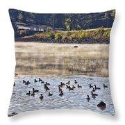 Water Fowl At Lake Wilhelmina Arkansas Throw Pillow by Douglas Barnard