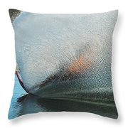 Water Skiing Magic Of Water 18 Throw Pillow by Bob Christopher