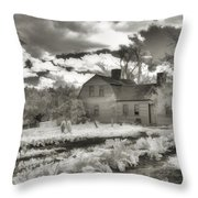 Watercolor In Black And White Throw Pillow by Joann Vitali