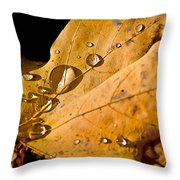 waterfall Throw Pillow by Burney Lieberman