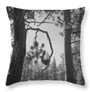 We Two Throw Pillow by Laurie Search