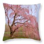 Weeping Spring- Holmdel Park Throw Pillow by Angie Tirado