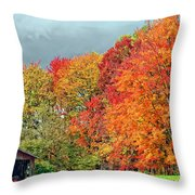 West Virginia Maples 2 Throw Pillow by Steve Harrington