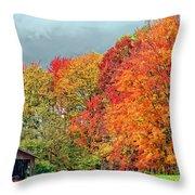 West Virginia Maples 2 Throw Pillow by Steve Harrington