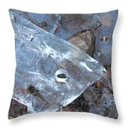 Whale Throw Pillow by Randi Shenkman