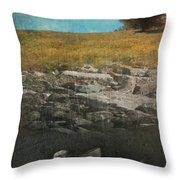 What Lies Below Throw Pillow by Laurie Search