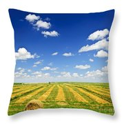 Wheat farm field at harvest Throw Pillow by Elena Elisseeva