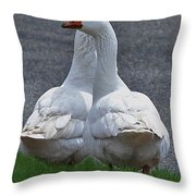 Which Way Throw Pillow by Lisa  Phillips