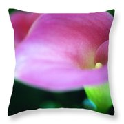 Whisper of a Calla Throw Pillow by Kathy Yates