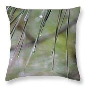 Whispers Of An Autumn Rain Throw Pillow by Maria Urso
