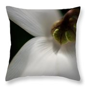 White Graceful Throw Pillow by Mike Reid