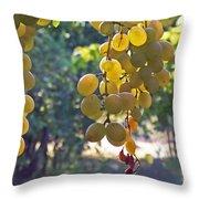White Grapes Throw Pillow by Barbara McMahon