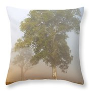 White Gum Dawn Throw Pillow by Mike  Dawson