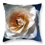White Rose Throw Pillow by Addie Hocynec