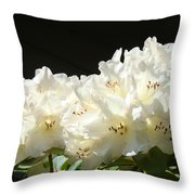 White Sunlit Floral Art Prints Rhododendron Flowers Throw Pillow by Baslee Troutman